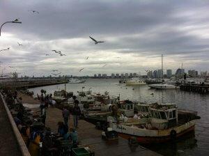 Compras em Punta del Este: Puerto de Punta del Este