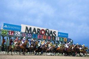 Montevidéu em janeiro: Gran Premio Ramirez no Hipódromo de Maroñas