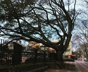 Montevidéu em setembro: clima