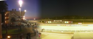Hipódromo de Maroñas em Montevidéu: pista