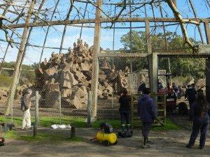 Zoo Parque Lecocq em Montevidéu: instalações