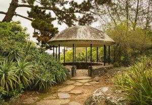 Parque Arboretum Lussich em Punta del Este: mirante